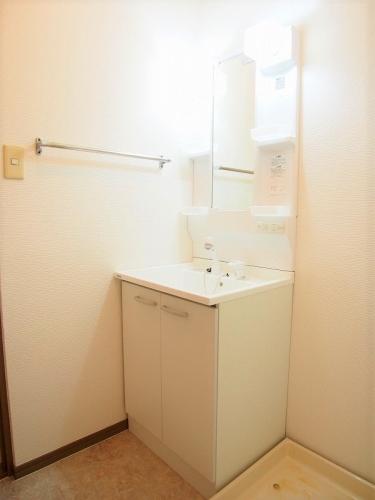 メロディハイツ乙金 / 202号室洗面所