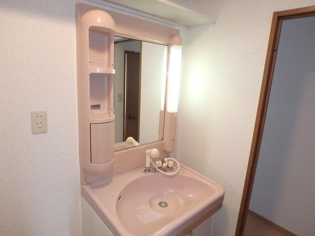 高義ビルⅡ / 206号室洗面所