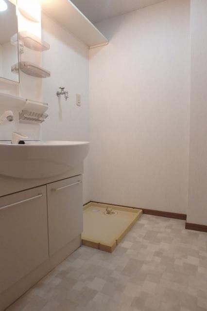高義ビルⅡ / 303号室洗面所