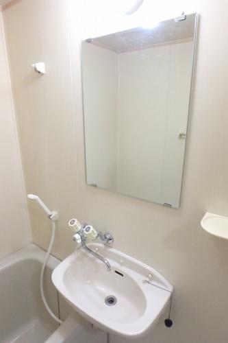 ジュネス東大利 / 301号室洗面所