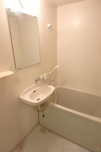 ジュネス東大利 / 305号室洗面所