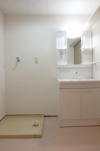 Cityハイツ山田 / 101号室洗面所