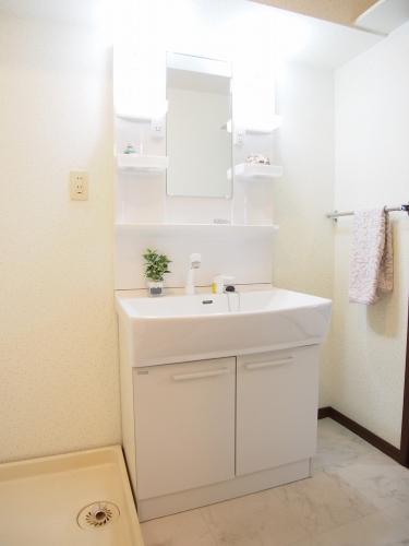 レスピーザⅡ / 207号室洗面所