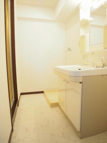 レスピーザⅡ / 406号室洗面所