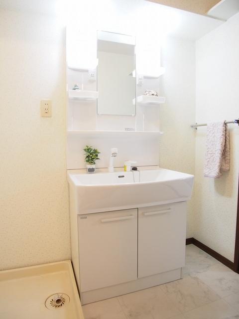 レスピーザⅡ / 407号室洗面所
