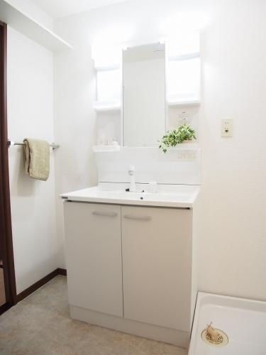 レスピーザⅡ / 602号室洗面所