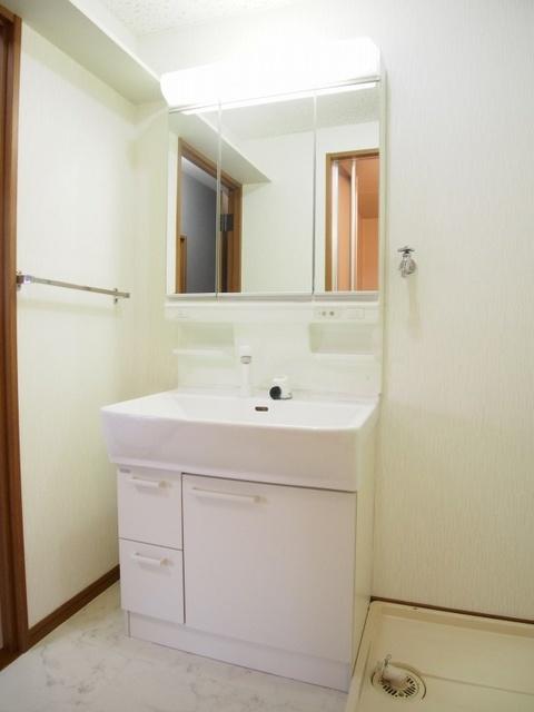 ルミエール東大利 / 201号室洗面所