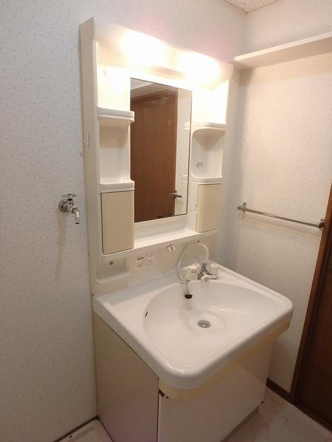 ルミエール東大利 / 303号室洗面所