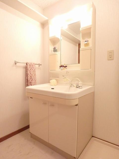 ルミエール東大利 / 402号室洗面所