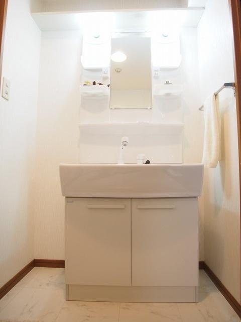 ホワイトヴィラ / 202号室洗面所