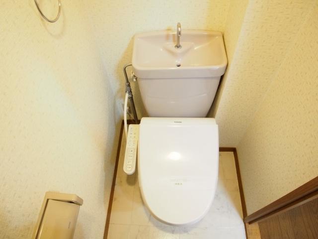 ホワイトヴィラ / 302号室トイレ