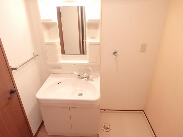 FIRENZE'95(フィレンツェ95) / 303号室洗面所