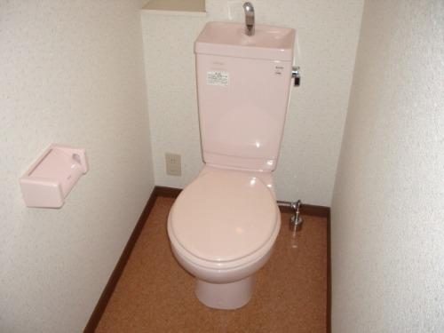 クレール東大利A / 201号室トイレ