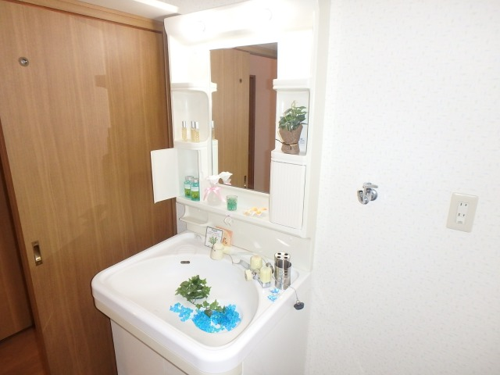 フローラルハイツ / 603号室洗面所