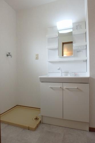 サンハイム日永田 / 203号室洗面所