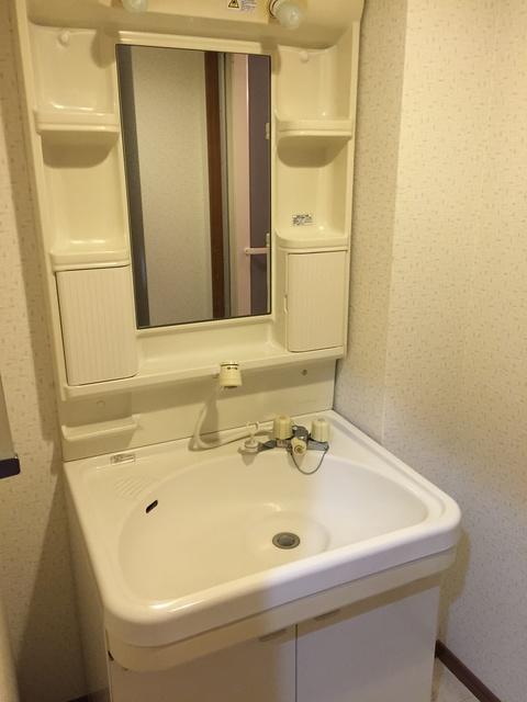 フレア・クレスト水城 / 205号室洗面所