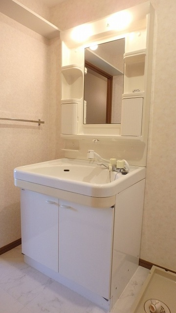 グレースコート11 / 301号室洗面所