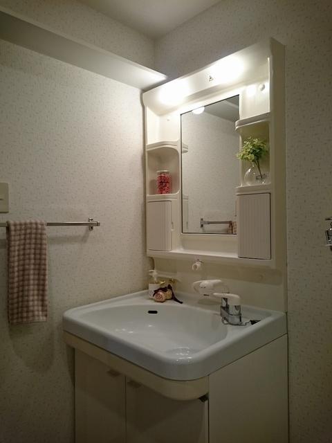 グランドアビタシオン村上 / 101号室洗面所