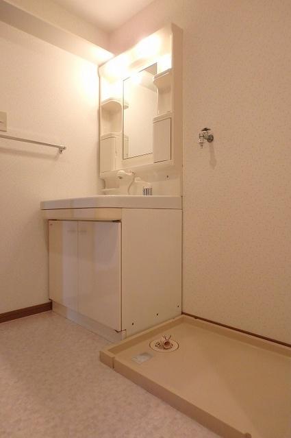 グランドアビタシオン村上 / 303号室洗面所