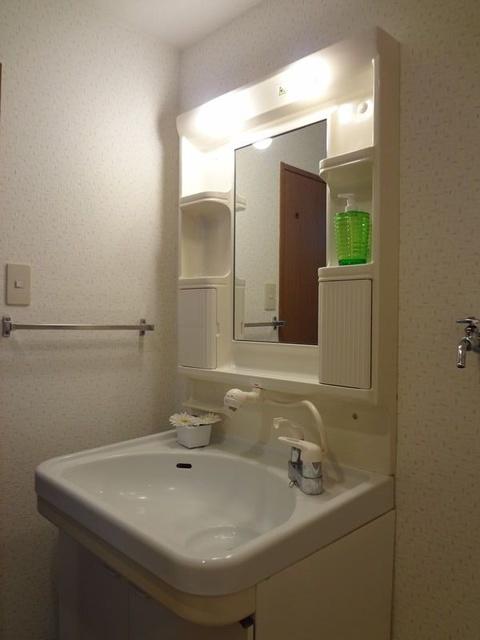 グランドアビタシオン村上 / 501号室洗面所