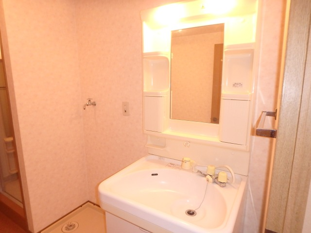 グランピア若草 / 401号室洗面所