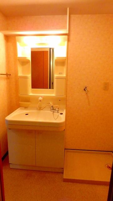 クレールマノワール / 101号室洗面所