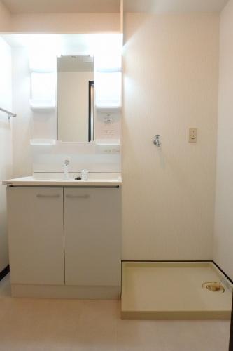 クレールマノワール / 201号室洗面所