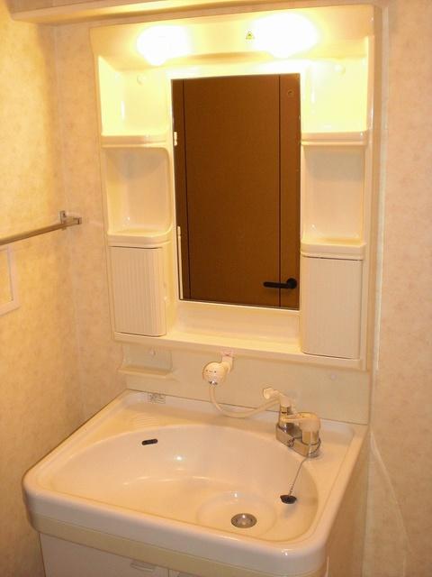 クレールマノワール / 205号室洗面所