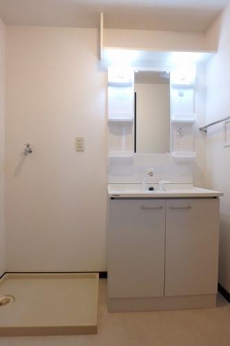 クレールマノワール / 302号室洗面所