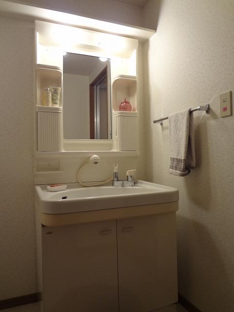 シーラ・プラッツ / 302号室洗面所