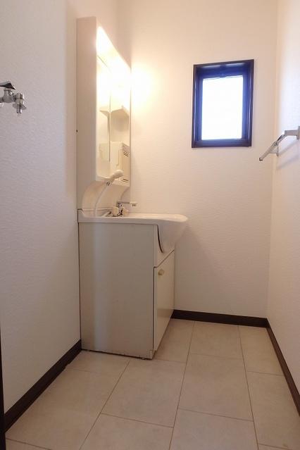 プレジデント正弥 / 1-210号室洗面所