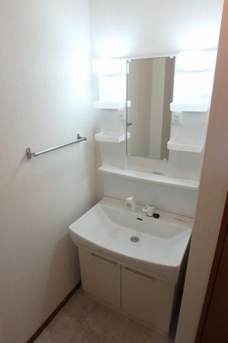 アムール8 / B-202号室洗面所
