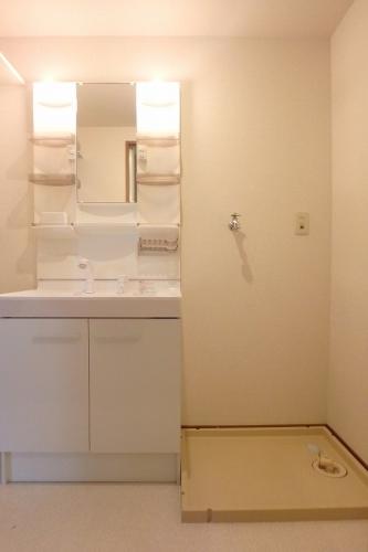 ディナスティⅤ / 201号室洗面所