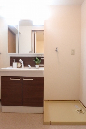 ディナスティⅤ / 401号室洗面所