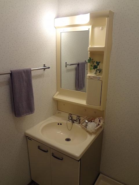 メロディハイツ乙金 / 102号室洗面所