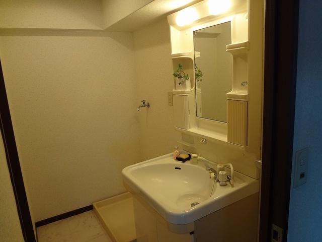 レスピーザⅡ / 506号室洗面所