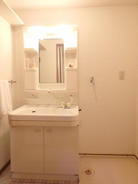 FIRENZE'95(フィレンツェ95) / 201号室洗面所