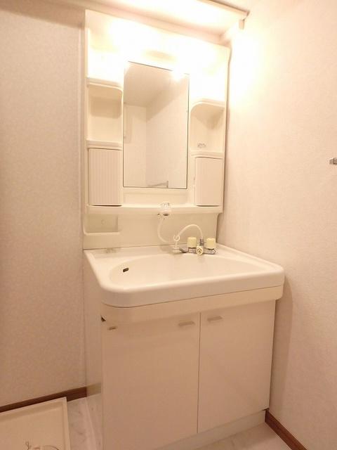 グレースコート11 / 401号室洗面所