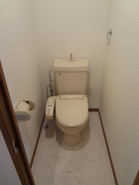 シーラ・プラッツ / 202号室トイレ
