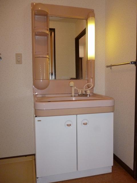 セントラルハイツ / 302号室洗面所