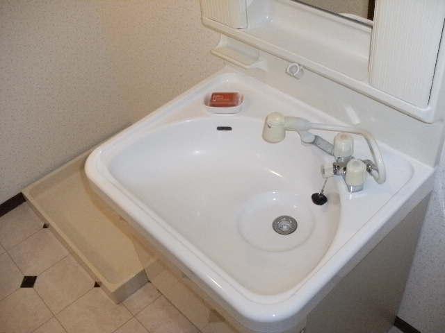 レスピーザⅡ / 503号室洗面所