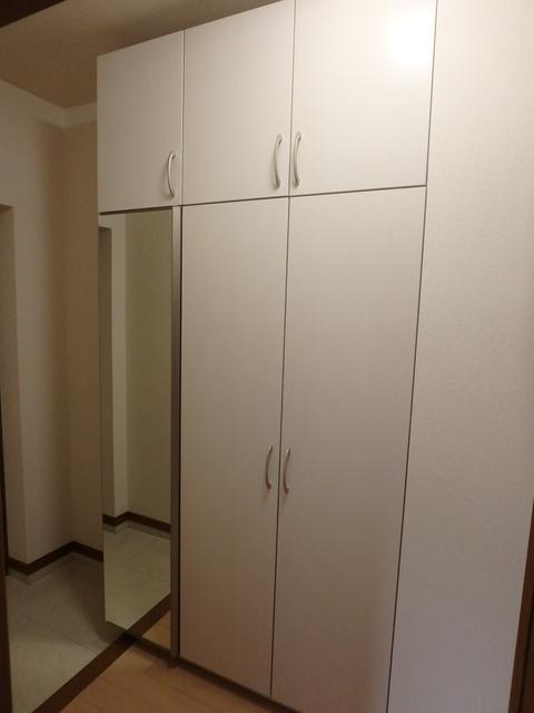 ルミエール東大利 / 103号室収納