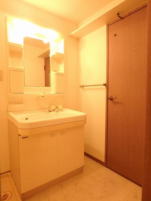ホワイトヴィラ / 105号室洗面所