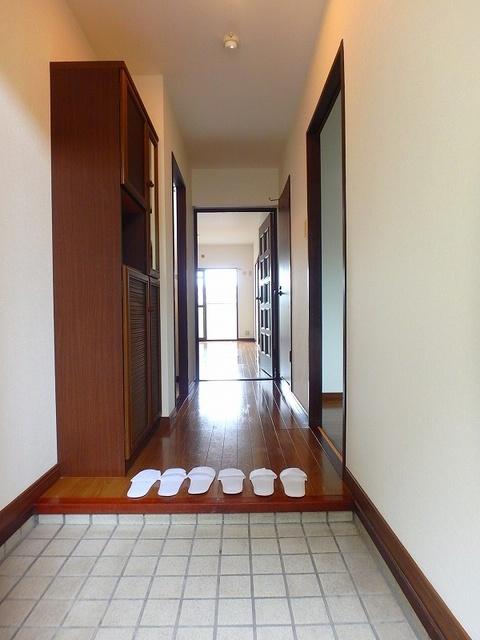 セントラルハイツ / 202号室玄関