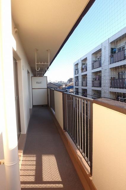 フレグランス20 / 301号室玄関