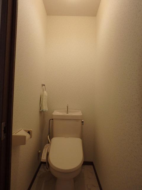 メロディハイツ乙金 / 101号室トイレ