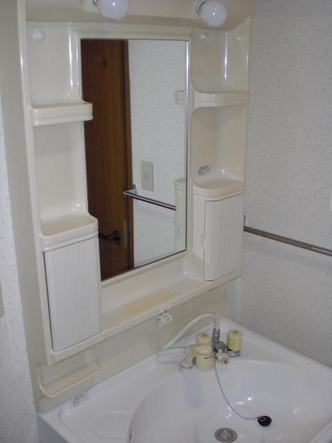 フェニックス大野城 / 501号室洗面所