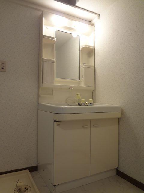 グレースコート11 / 203号室洗面所