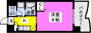 BRILLIANT36 / 402号室間取り