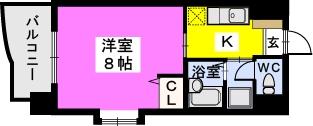 BRILLIANT36 / 407号室間取り